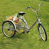 FANO-TEC Dreirad Für Erwachsene Behindertenfahrrad...