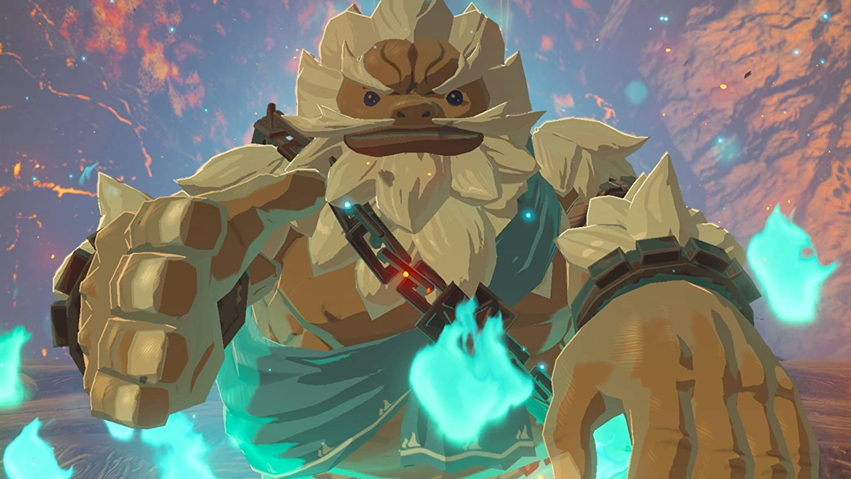 the legend of zelta nintendo switch spiel single player