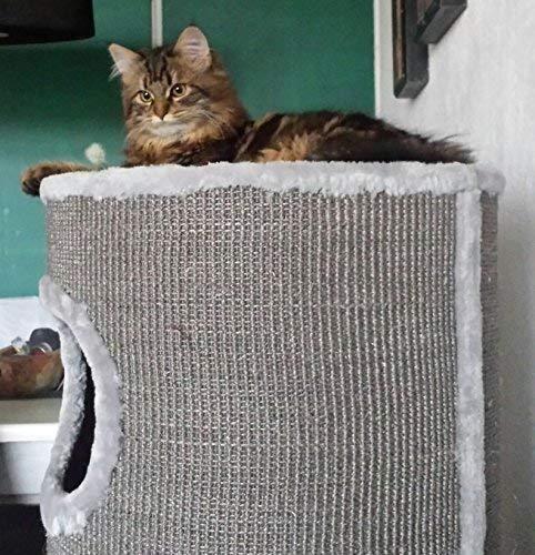 xxl kratzturm große katze